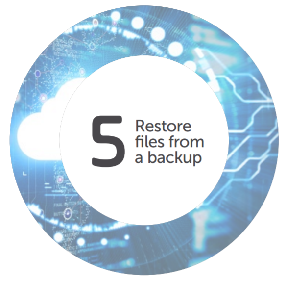 Restore from Backup